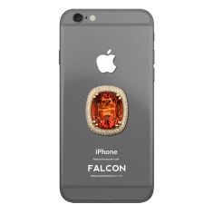 falcon_1_iphone_6__3
